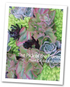 The Pick of the Planet 2014 Plant Catalog