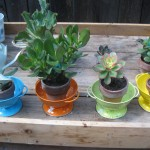 Colorful sieves become plant holders.